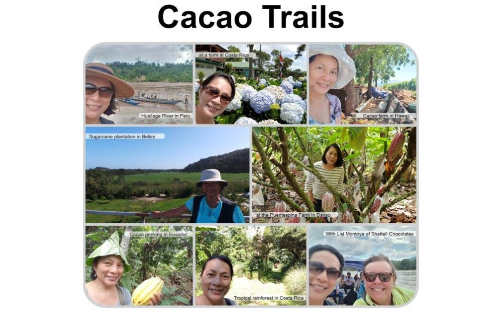 A pastry chef's cacao journey
